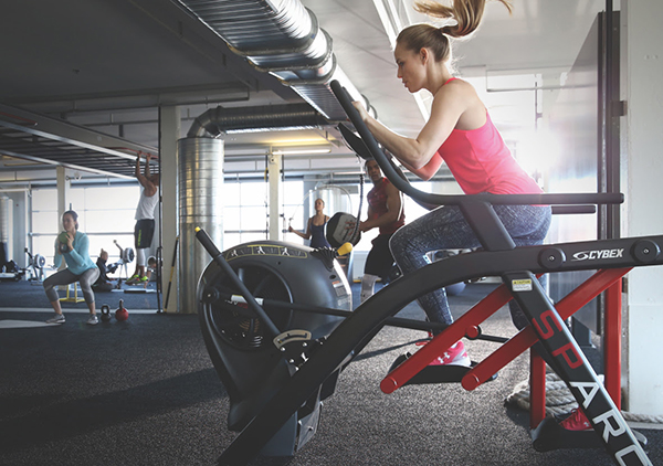 Commercial And Home Fitness Equipment Cybex